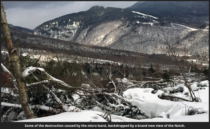 The Stowe Microburst Fallout: Destruction Image
