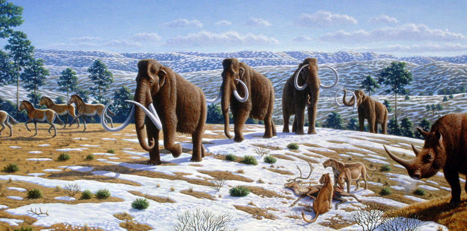 Top 5 Fridays: We're Heading for a Mini Ice Age
